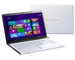 Ноутбук Sony VAIO SVE1713M1R