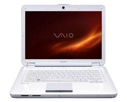 Ноутбук Sony VAIO VGN-CS190JTW