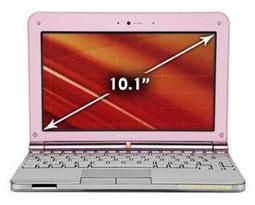 Ноутбук Toshiba NB205-N313
