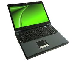 Ноутбук Eurocom D900F Panther Server